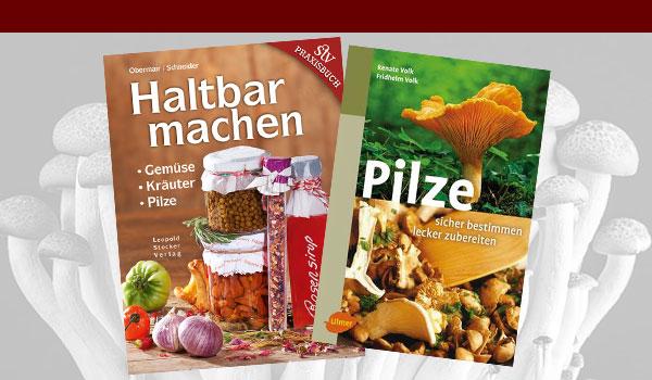 Literatur-zum-EinlesenMtpVDU3sdsUdR