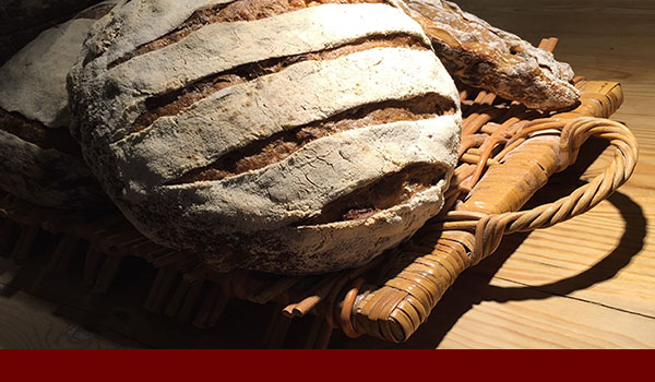 Brotbacken-Teig