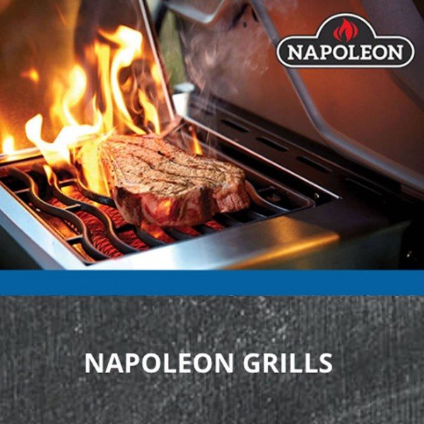 holzeis - GRILL WORKSHOP Napoleon Sizzle Zone