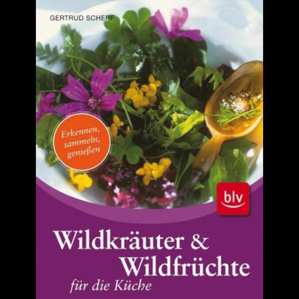 Wildkräuter & Wildfrüchte für die Küche/ blv